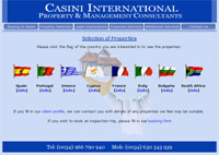 Casini International